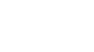 Inspirus | Circles Parter | Circles Business Solutions